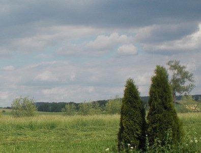 tls-kaubenheim-aussicht1